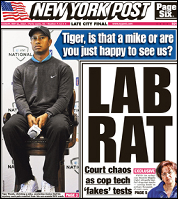 Tiger-NY-Post